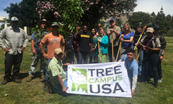 LAVC Arbor Day tree planting