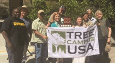 LAVC Named a Tree Campus USA for the 7th Consecutive Year