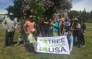 Arbor Day 2017 Tree Planting Photo